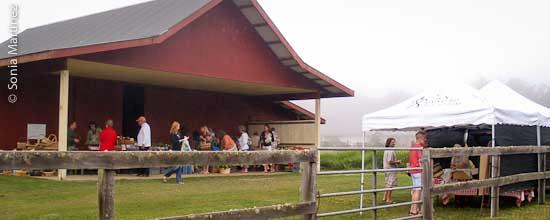 Kekela Farm Market in Waimea.