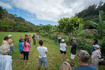 Noel Dickinson of the Breadfruit Institute shows participants the agroforestry demonstration site at the Kauai workshop on February 10.